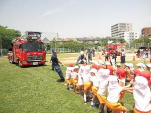 消防車とつなひき