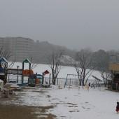 雪が積もる冷たい朝。
