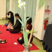 お茶参観 ツバキ、杉、水仙のお花が