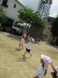 とんぼ (4)