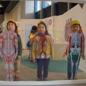 「キッズラボ BODYコーナー」では、模型などを見て自分の体の仕組みについて知りました。