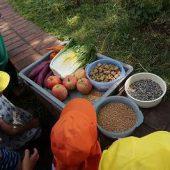 サルのエサの内容は、ニンジン、サツマイモ、ハクサイ、リンゴ、サルフード、小麦、ヒマワリの種、全部で7種類食べるそうです。