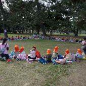お弁当は幼稚園のお友だちみんなで一緒にいただきました。