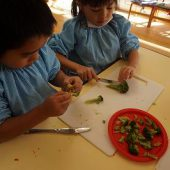 ブロッコリーを切るのは初めてでしたが、食べやすい大きさに切れました。