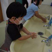 登園後、手洗いをしっかりと行います。歌を歌いながら上手に出来るようになってきました