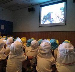 クワガタとカブトムシの映画も観せて頂きました。