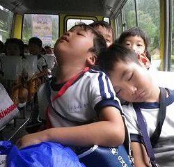 神峯山寺さんに、ご挨拶をして幼稚園へ帰ります。 二日間いろんな体験ができて、楽しかったですね!