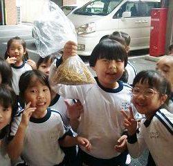 お米の粒がたくさんとれたよ!