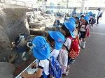 たくさんのペンギンが迎えてくれました。