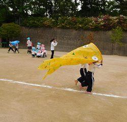 年中さんは年長さんと一緒に、出来上がった鯉のぼりを使って、「鯉のぼりリレー」をして楽しんでいました。