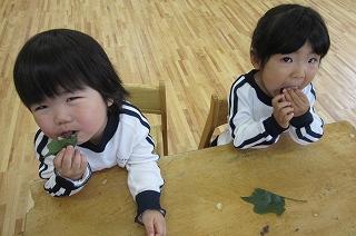 年少さんも美味しそうに食べてくれていましたヽ(*´∀`)ノ