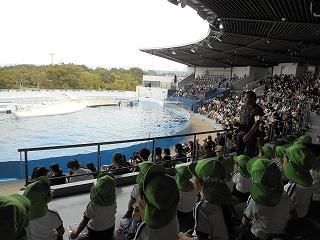 満席の中、イルカたちが泳ぎやジャンプを披露してくれました♪