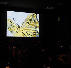 「そらをとびたいあおむし」というお話の映画をみました!どんな風に蝶になるかが分かったね☆