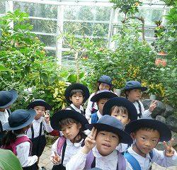 そして!とても楽しみにしていた蝶温室!!