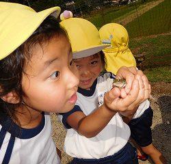 しっかりカエルを捕まえて『見てみて~!』『どれどれ~!』