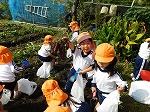 「せんせい!みて~!!」 子どもたちはとても楽しんで掘っていました!