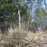 DSCF1785
