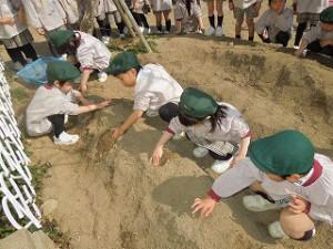 穴掘りに夢中な子ども達です^^