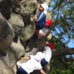 高い岩も簡単に登れるよ(^o^)