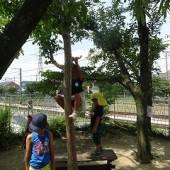 木登りも大好き!